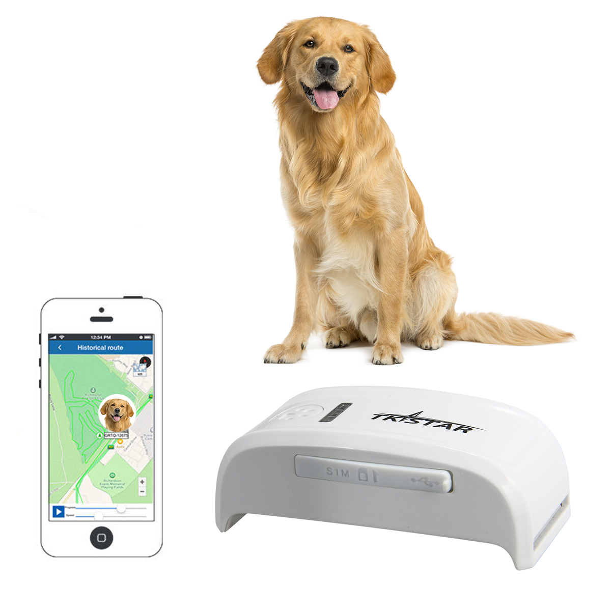 gps tracker localisation gsm balise balise chien animal collier traceur ps013 ebay. Black Bedroom Furniture Sets. Home Design Ideas